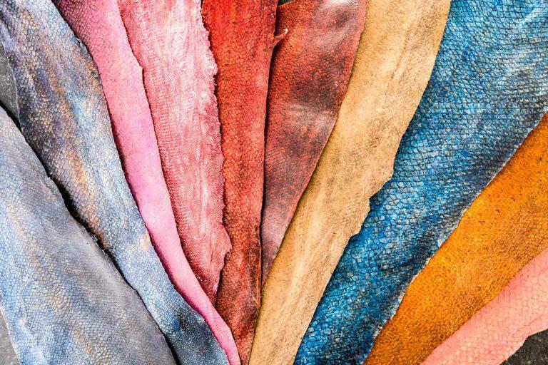 Le cuir de poisson : du déchet au produit de luxe