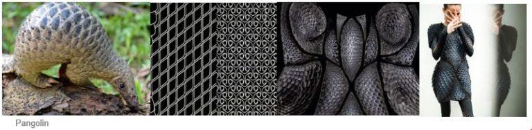 Les textiles Bio-inspirés : le vêtement serpent