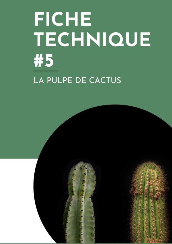 pulpe de cactus